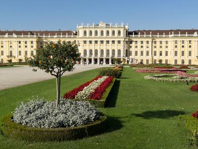 Partnervermittlungen in österreich